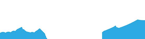 Stem Marine logo